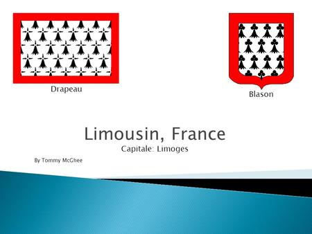 Drapeau Blason Limousin, France Capitale: Limoges By Tommy McGhee.