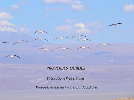 PROVERBES OUBLIES Et Locutions Proverbiales