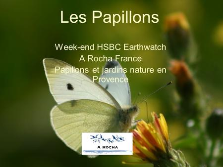 Les Papillons Week-end HSBC Earthwatch A Rocha France Papillons et jardins nature en Provence.