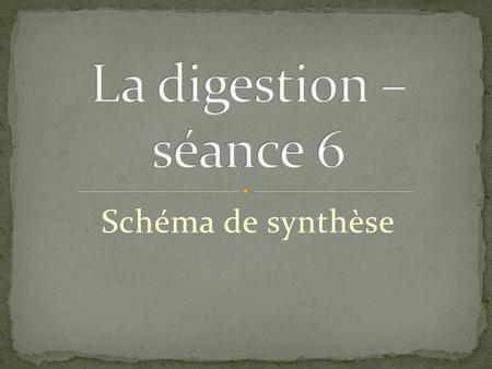 Schéma de synthèse. Dents: mastication Salive Dents: mastication Salive Œsophage.