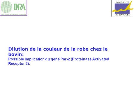 Dilution de la couleur de la robe chez le bovin: Possible implication du gène Par-2 (Proteinase Activated Receptor 2).