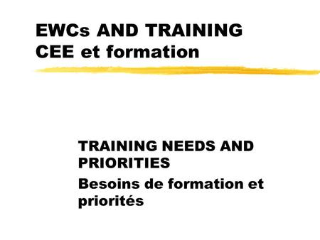EWCs AND TRAINING CEE et formation TRAINING NEEDS AND PRIORITIES Besoins de formation et priorités.