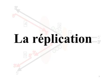 La réplication.