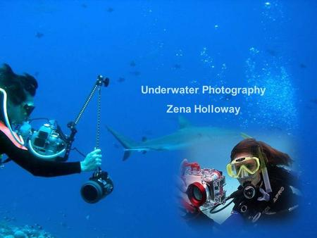 Underwater Photography Zena Holloway Zena was born in 1973 as a daughter of an airline pilot. After an Egyptian diving holiday at the age of 18, she.
