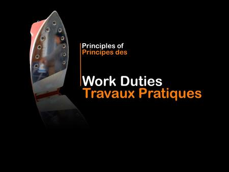 Work Duties Principles of Travaux Pratiques Principes des.