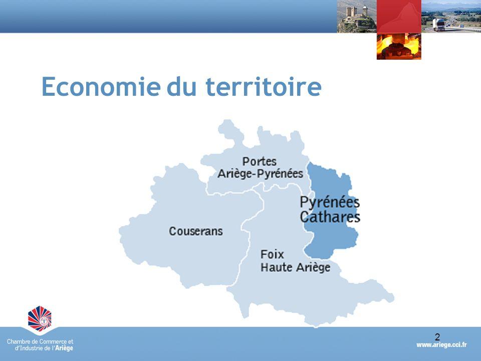 3Portrait économique synthétique du Pays des Pyrénées Cathares - avril 2010 Un tissu économique peu dense Territoires Nbre étsPoidsEffectifsPoids Pays des Pyrénées Cathares91718 %3 44516 % Ariège5 154100 %21 178100 % Source : fichier RCS de la CCI de lAriège – établissements actifs au 31/12/2009 5154 établissements et 21 178 salariés en Ariège (données RCS) Pays des Pyrénées Cathares : 18% des établissements ariégeois (917) et 16% des effectifs de lAriège (3 445) un poids économique relativement faible, toutefois à relativiser au regard de la superficie du territoire (13% de la superficie du département)