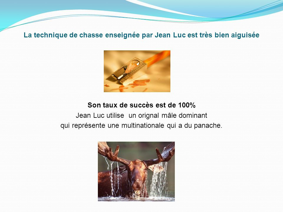 La technique de chasse enseignée par Jean Luc est très bien aiguisée Son taux de succès est de 100% Jean Luc utilise un orignal mâle dominant qui représente une multinationale qui a du panache.