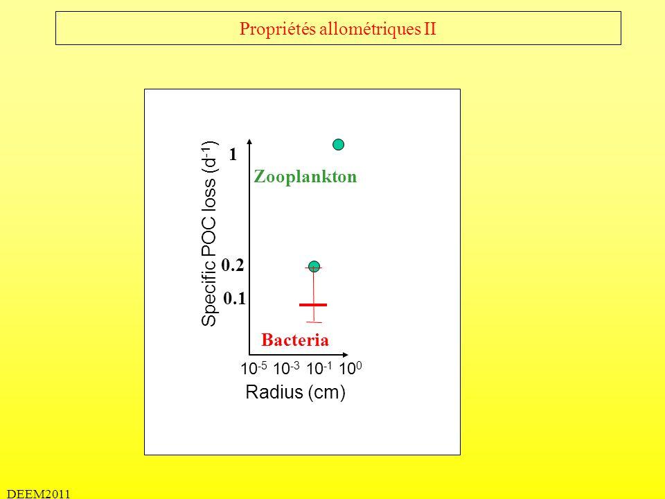 DEEM2011 4) Interaction particules – phytoplankton - zooplancton – microbes à micro-échelles Activité du zooplancton Activité des bactéries Coagulation physique