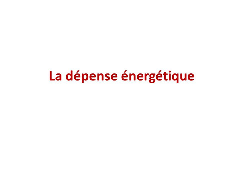 Les grandes fonctions (croissance, développement, maintien, reproduction...) ont un coût énergétique dont la somme est appelée dépense énergétique totale Apports: Pour couvrir ses besoins, lhomme puise lénergie dans le milieu extérieur ou dans ses réserves, à partir des liaisons chimiques des nutriments et la transforme en une autre énergie chimique utilisable = ATP Dépenses: Lhomme restitue lénergie au milieu extérieur sous forme chimique (urée, créatinine par exemple) mécanique et thermique En labsence de variation du poids ou de la composition corporelle, les apports énergétiques sont égaux aux dépenses introduction