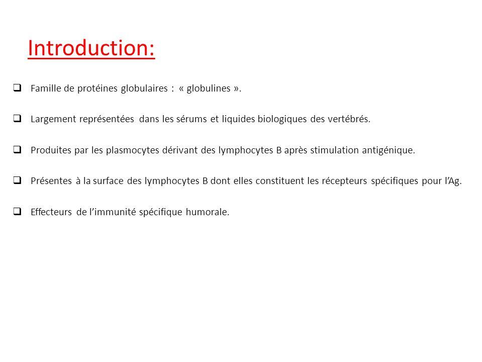 Classification des immunoglobulines: