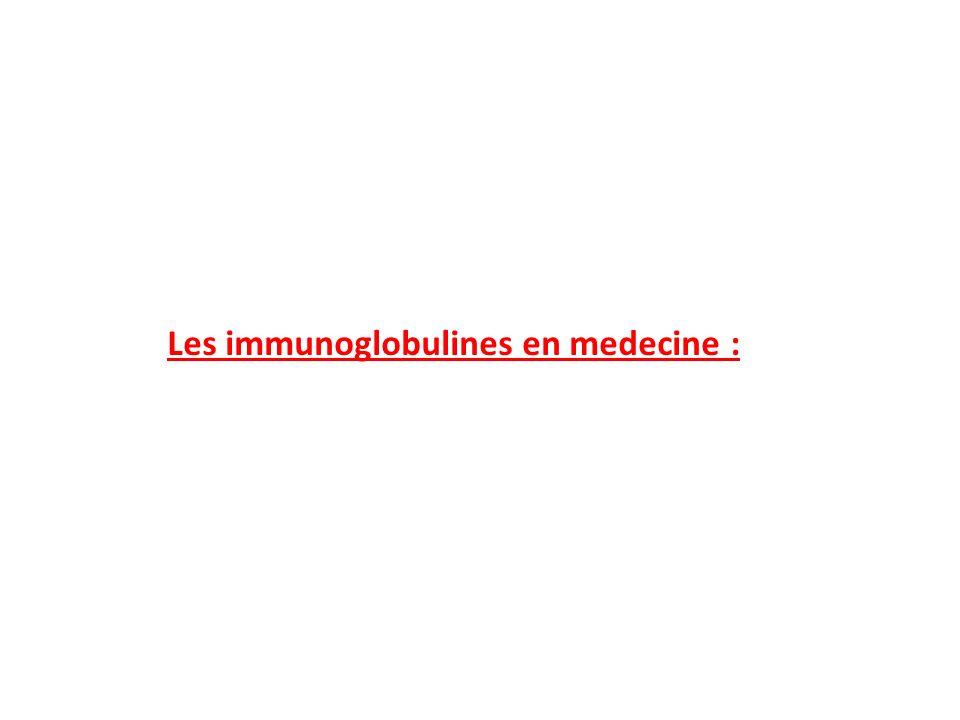 Production des immunoglobulines avant la naissance: Le fœtus possède dès le troisième mois de la vie in utero, un thymus, une ébauche ganglionnaire et des lymphocytes circulants.