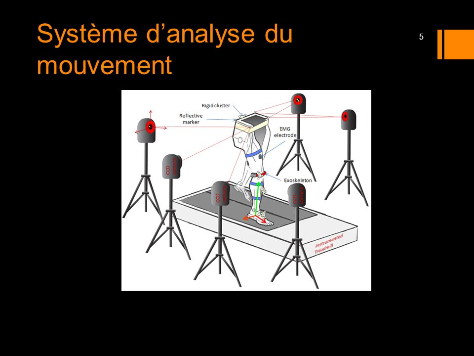 6 Inverse Dynamic Modeling Approach i th Segment i+1 th segment FMFM MFMF
