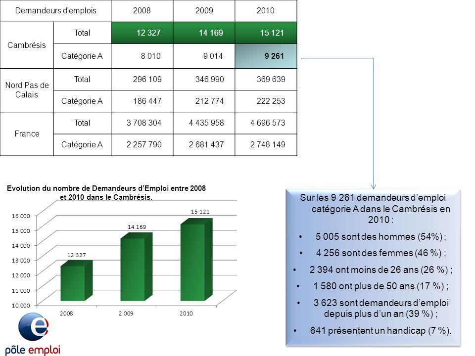 Les contrats aidés : Le public RSA: LInsertion par lActivité Economique :