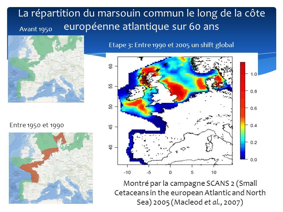La répartition du marsouin commun le long de la côte européenne atlantique sur 60 ans Etape 3: Entre 1990 et 2005 un shift global Le retour du marsouin commun le long des côtes française : - Variabilité intraspécifique .