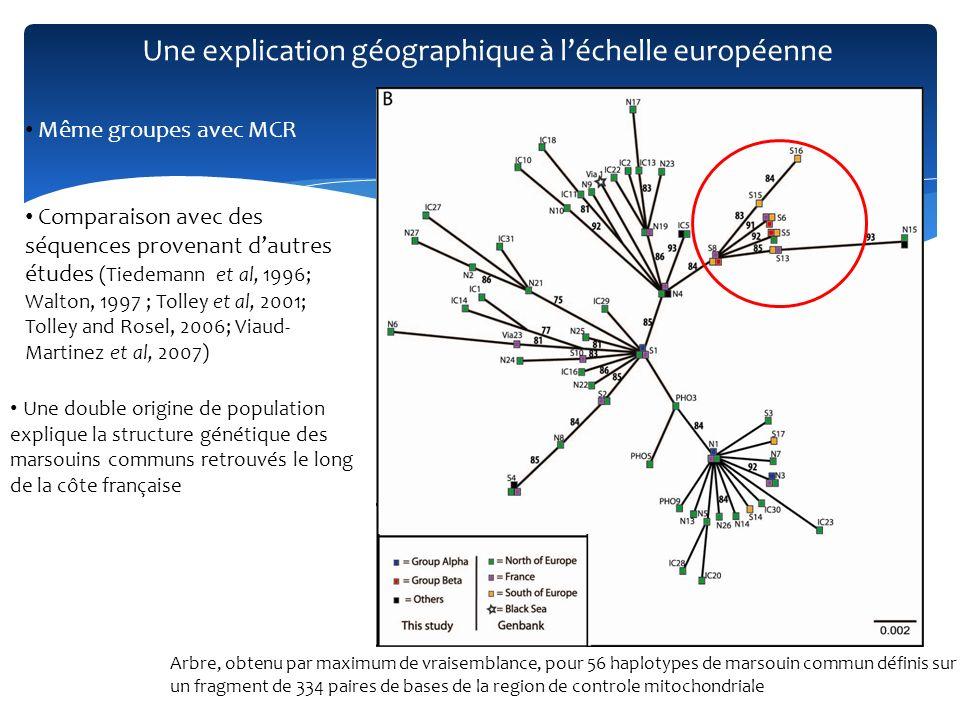 La comparaison entre les marqueurs nucléaires et mitochondriaux permet de comprendre le shift actuel des populations de marsouins communs le long des côtes atlantiques françaises Marqueurs mitochondriaux (MCR and Cox 1) => Deux groupes séparés avec une origine géographique différente Marqueurs nucléaires (7 loci microsatellites) => Une population homogène Contraste => Hybrides des deux populations Etude de la diversité intraspécifique met en lumière un inattendu double retour du marsouin commun