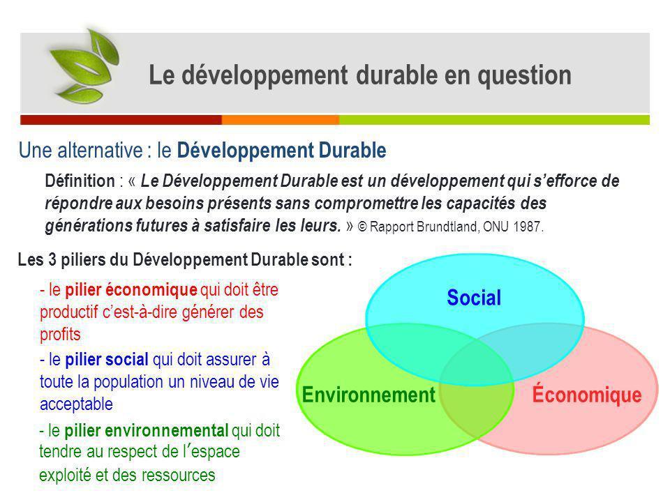 Dans la production de café et de coton privilégiant le profit économique, les enjeux environnementaux et sociaux ne sont pas pris en compte.