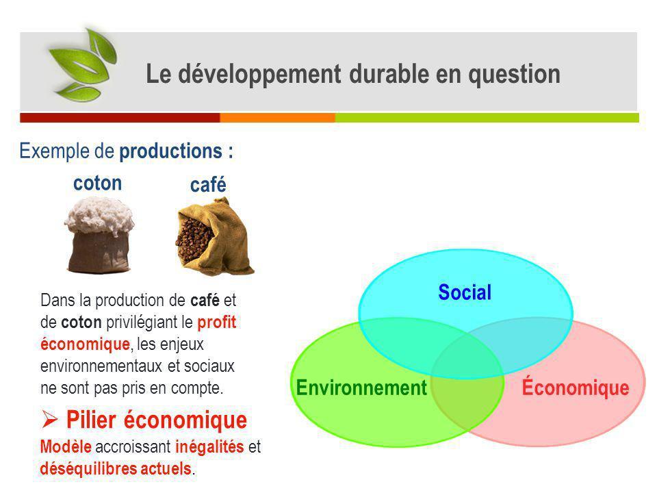 Exemple de productions de coton / café biologique Limpact sur lenvironnement des productions de coton et de café biologiques est plus faible lorsquelles respectent les normes de lagriculture biologique (ni pesticides et engrais de synthèse, ni OGM*).