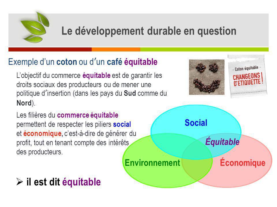 ÉconomiqueEnvironnement Social Prenons enfin lexemple dun coton ou café équitable et biologique - économique, car elles assurent la pérennité de lentreprise en dégageant du profit.