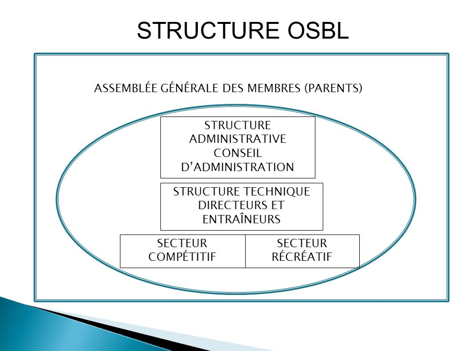 Dans la majorité des cas, la structure du club ne devrait pas être plus compliquée que ça.