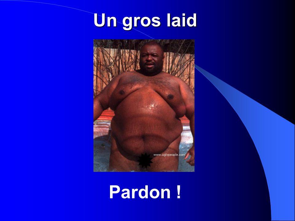 Un gros laid Pardon !