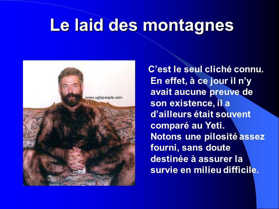 Le laid des montagnes Cest le seul cliché connu.