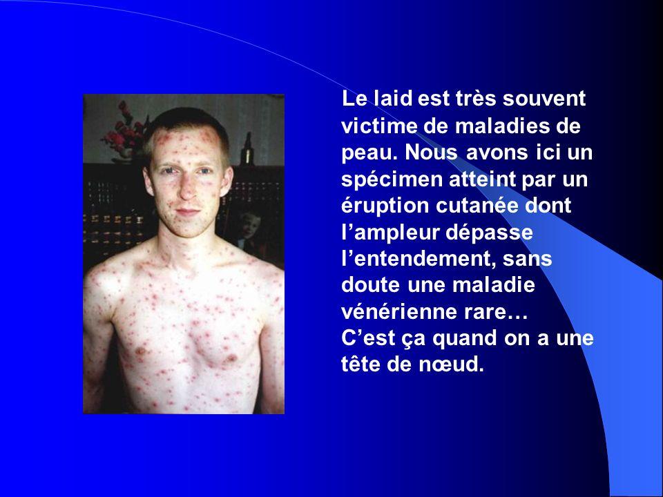 Le laid est très souvent victime de maladies de peau.
