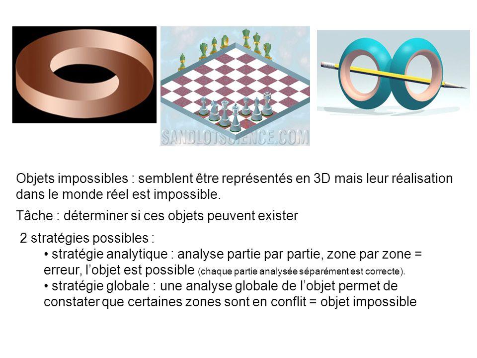 Objets impossibles : semblent être représentés en 3D mais leur réalisation dans le monde réel est impossible.
