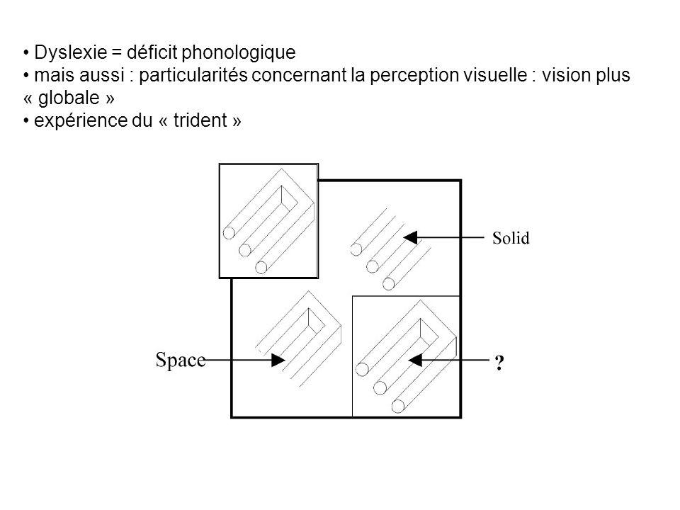 Dyslexie = déficit phonologique mais aussi : particularités concernant la perception visuelle : vision plus « globale » expérience du « trident »