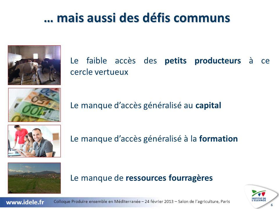 Colloque Produire ensemble en Méditerranée – 24 février 2013 – Salon de lagriculture, Paris www.idele.fr 7 Filière viande bovine : des besoins croissants à couvrir Source : GEB-Institut de lElevage daprès USDA, douanes et FAO.