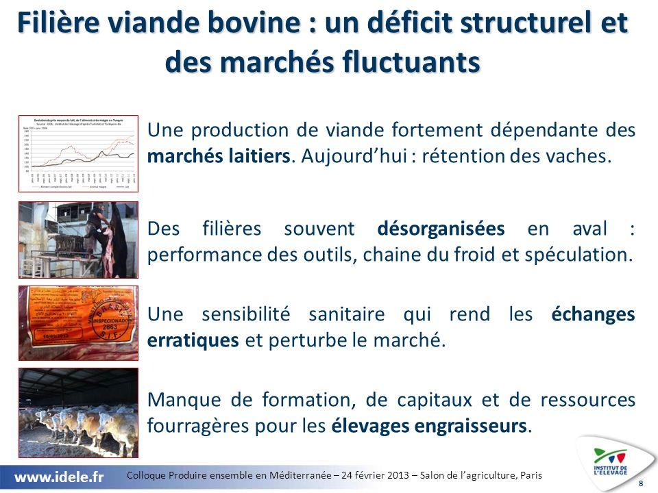 Colloque Produire ensemble en Méditerranée – 24 février 2013 – Salon de lagriculture, Paris www.idele.fr 9 Quelles réponses peut apporter le co- développement euro-méditerranéen .