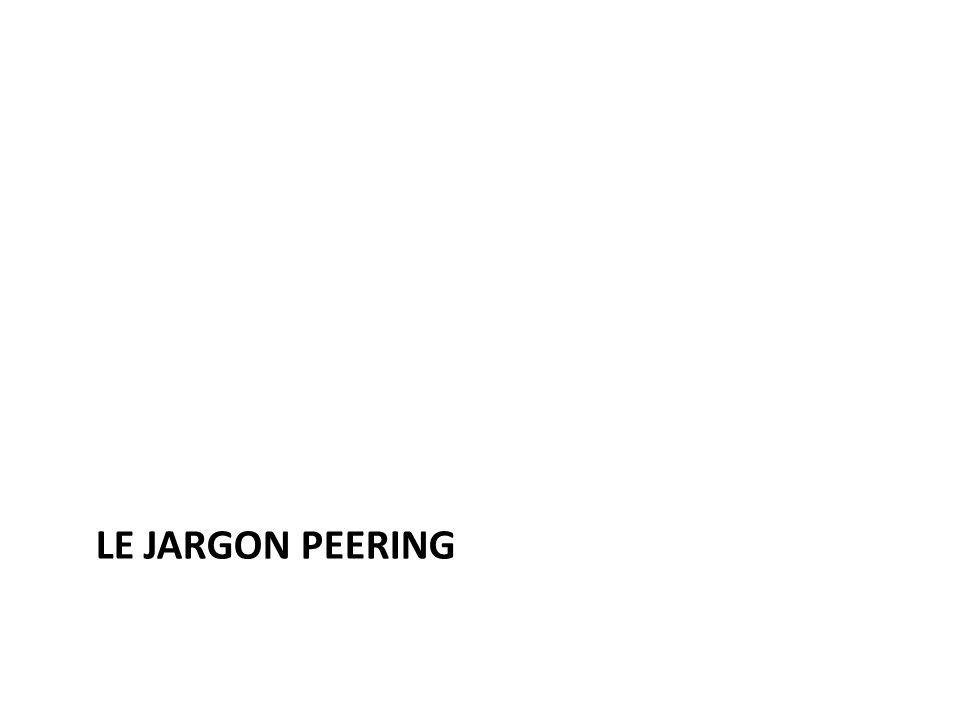 Le Jargon peering Beaucoup de terminologies sont utilisées dans le jeu de peering.