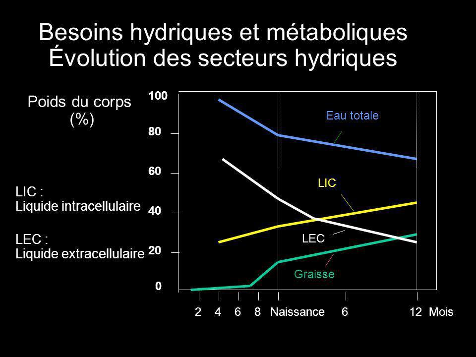Répartition des secteurs hydriques 1% 94% 12% 78% 25% 30% 67%65% 60% FœtusNouveau-né6 mois1 anAdulte 69% 45% 30% 25% 20% 25% 33% 37%40% Graisse Eau extracellulaire Eau intracellulaire Tissus secs