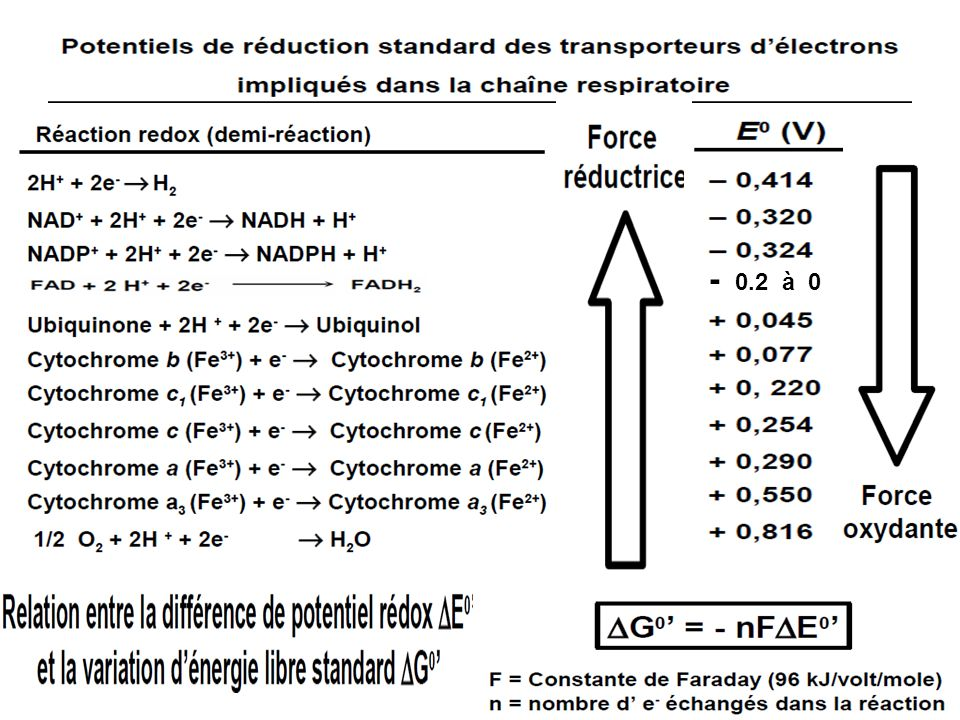 Exemples de réactions doxydoréduction