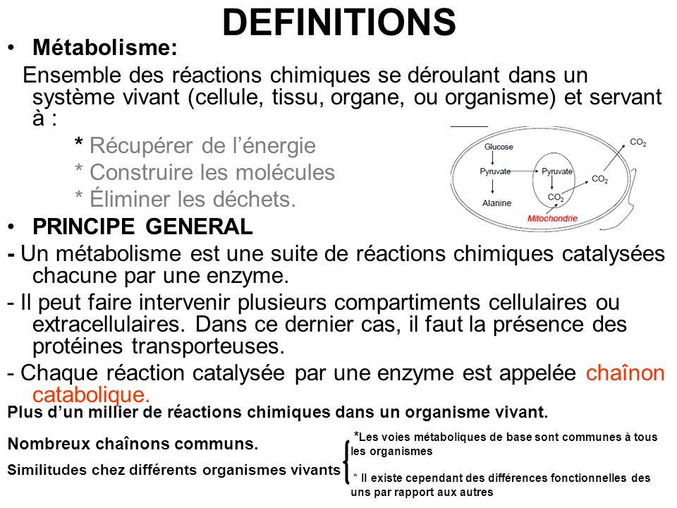 Réactions métaboliques Létude du métabolisme a montré que, à de rares exceptions près, tous les chaînons intervenant in vivo appartiennent ou sont la combinaison de 5 types de réactions simples correspondant à des processus « majeurs » et « mineurs » : Processus majeurs : –Hydrolyse/condensation –Synthèse/rupture de squelette –Oxydoréduction Processus mineurs: –Hydratation /déshydratation –Tautomérie cétoénolique