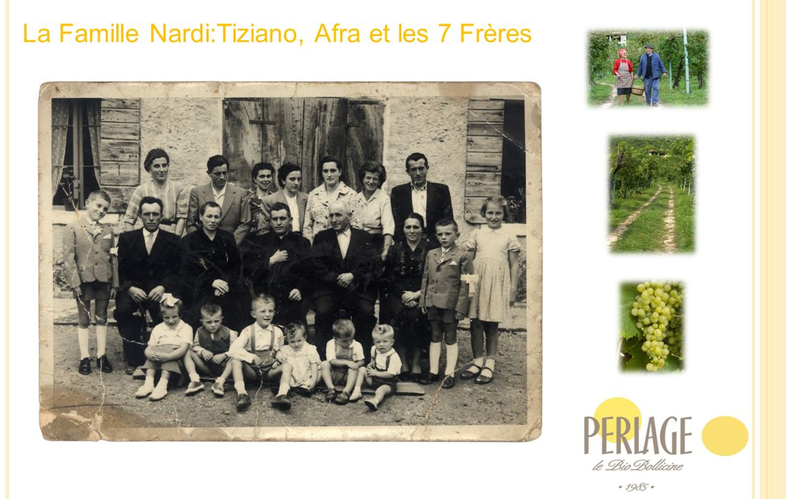 1981 -1985 De la Famille à la Société à responsabilité limitée De lagriculture conventionelle à lagriculture biologique