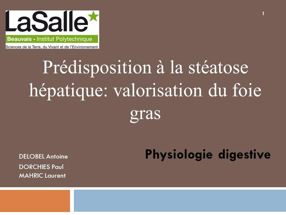 Sommaire Introduction I) Présentation de la stéatose hépatique II) Réactions conduisant à la stéatose hépatique III) Prédisposition à la stéatose hépatique Conclusion 2
