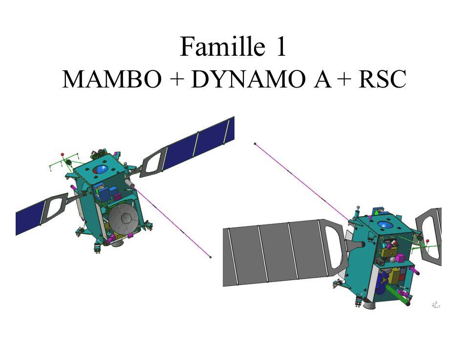 Famille 1 MAMBO + DYNAMO A + RSC