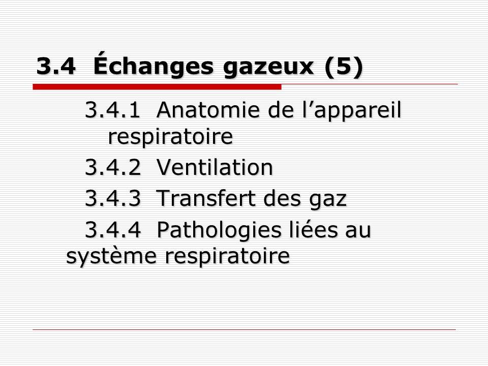 Excrétion et maintien de lhoméostasie (5) 3.5 Excrétion et maintien de lhoméostasie (5) 3.5.1 Anatomie et physiologie du système excréteur 3.5.2 Homéostasie 3.5.3 Pathologies liées au système excréteur