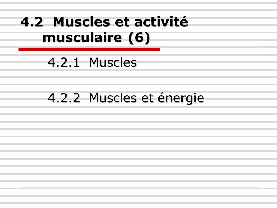 4.3 Traumatismes et pathologies liés au mouvement (3) 4.3.1 Prévention 4.3.2 Description de quelques cas 4.3.3 Traitements de traumatismes aux tissus mous Test 3