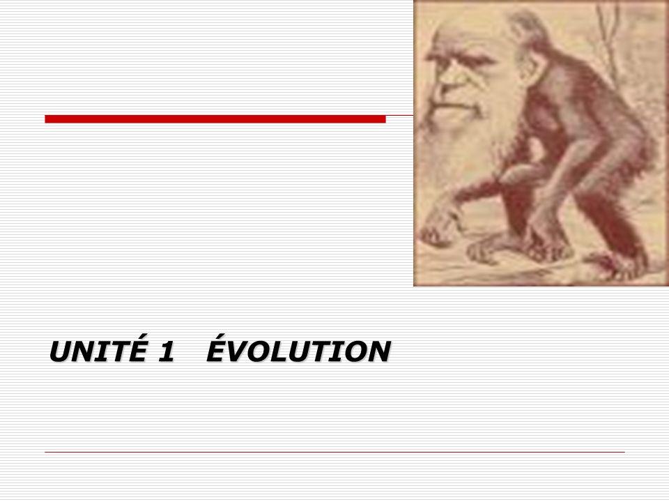 1.1 Introduction à lévolution, concept unifiant en biologie (2) 1.1.1 Fondements de lévolution 1.1.2 Évolution, le fil conducteur en biologie