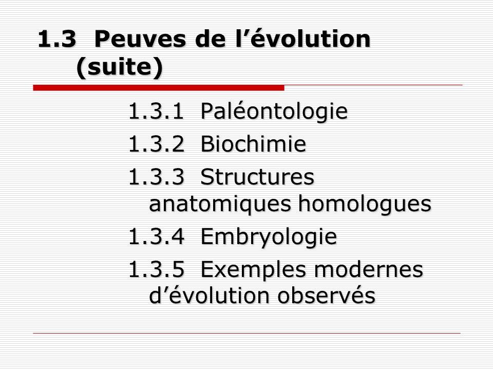 Évolution de lhumain (4) 1.4 Évolution de lhumain (4) 1.4.1 Classification 1.4.2 Être humain primate 1.4.3 Origine commune 1.4.4 Écologie des ancêtres de lhumain 1.4.5 Évolution de lhumain Test 5