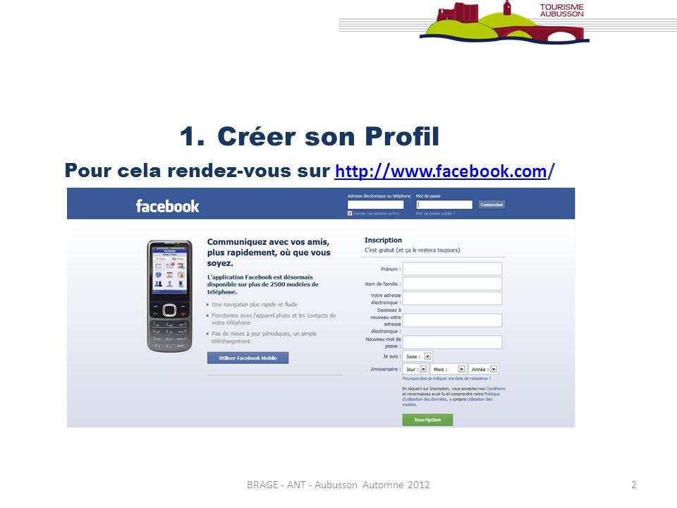 BRAGE - ANT - Aubusson Automne 20123 Facebook est un excellent outil de relation Client / Professionnel