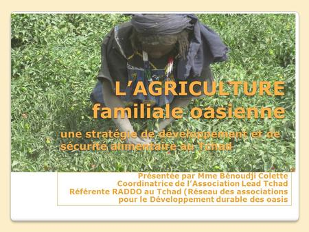 L'AGRICULTURE familiale oasienne