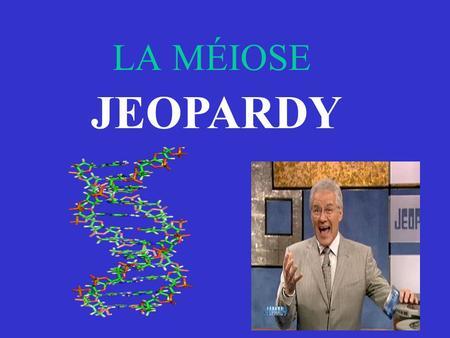 LA MÉIOSE JEOPARDY.