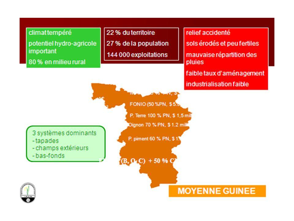 Situation Géographique : Latitude Nord : 10° 10' - 12° 30' Longitude Ouest : 11° 30'- 13° 30' Superficies : 65 000 km² Limites Est: Haute Guinée Ouest: Basse Guinée et Guinée Bissau Nord: Sénégal et R.