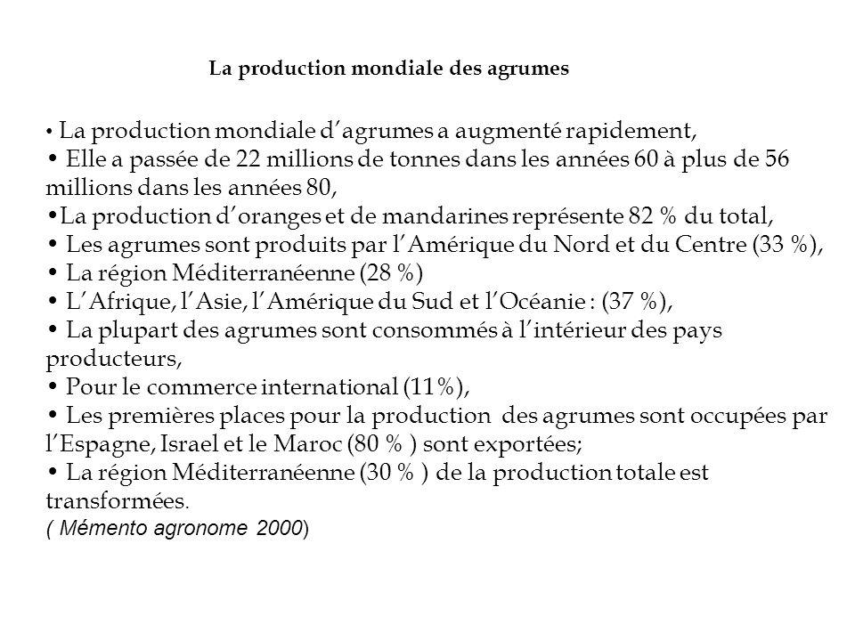 La production des Agrumes en Guinée Atout Le climat favorable, Les plantations diversifiées les vergers sont composés de variétés exportables appréciées par les importateurs.