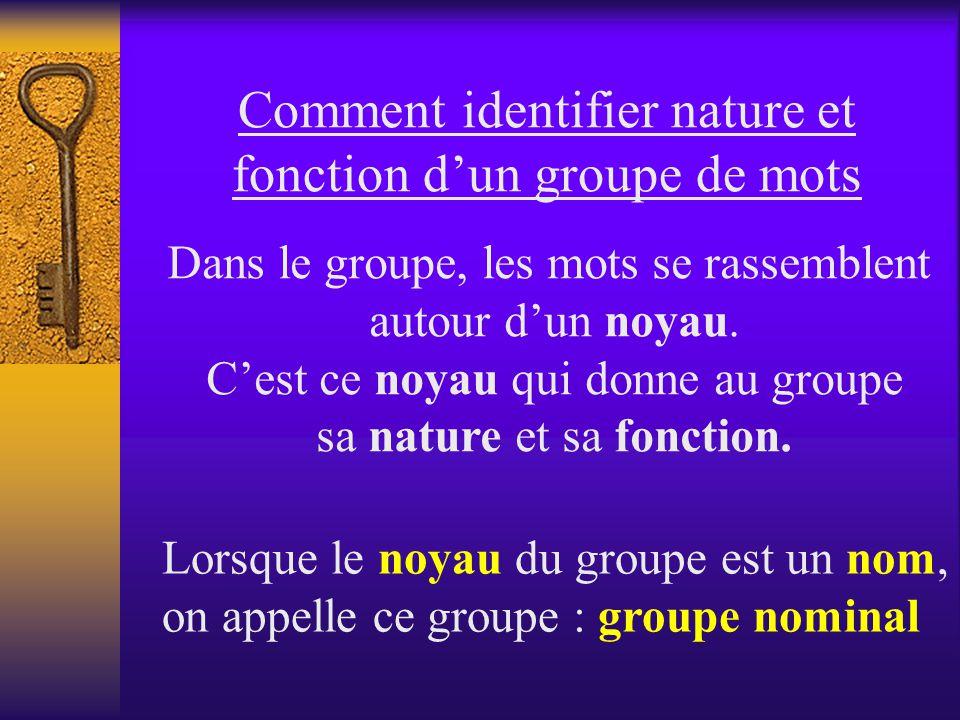 Comment identifier nature et fonction dun groupe de mots Dans le groupe, les mots se rassemblent autour dun noyau.
