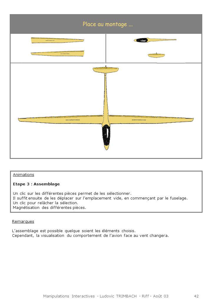 Manipulations Interactives - Ludovic TRIMBACH - Riff - Août 0343 Etape 4 : Inspection En fonction des choix de construction, la page est différente.