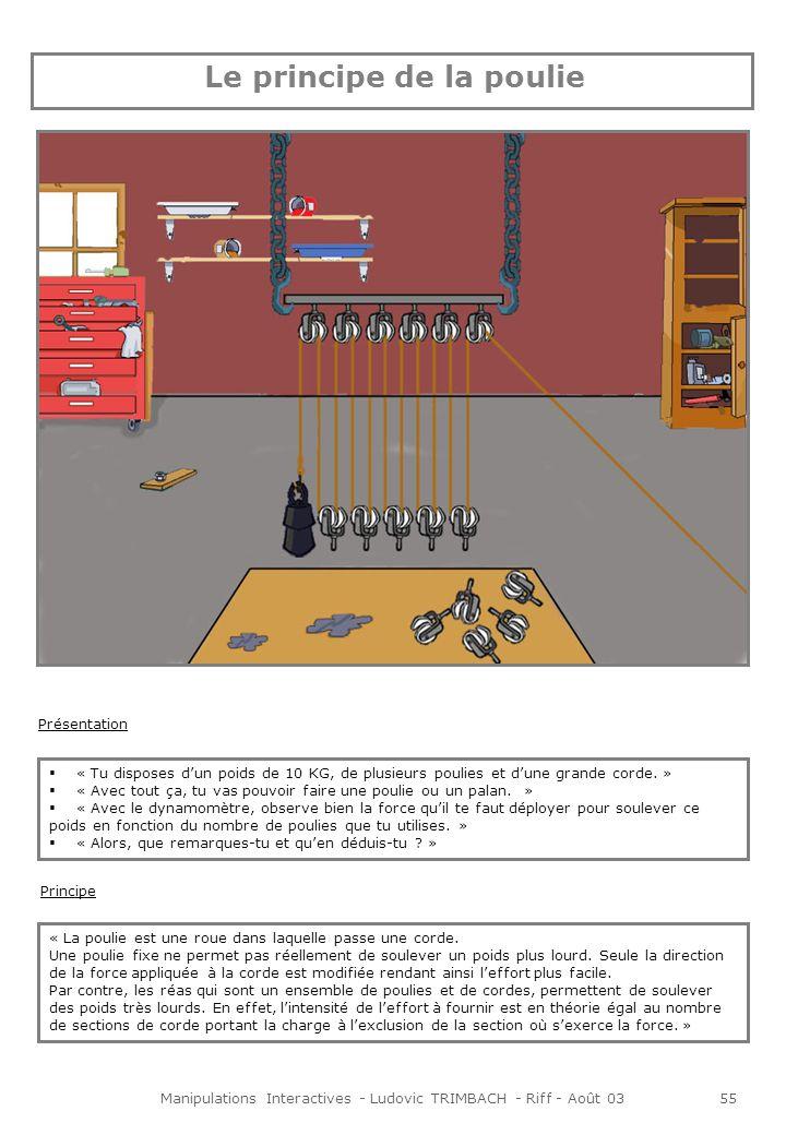 Manipulations Interactives - Ludovic TRIMBACH - Riff - Août 0356 Animations Un clic sur les poulies permet de les sélectionner.