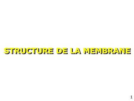 1 STRUCTURE DE LA MEMBRANE 2 Introduction Membrane plasmique –limite de la cellule –différences intra/extra cellulaire Membranes intra-cellulaires –RE,